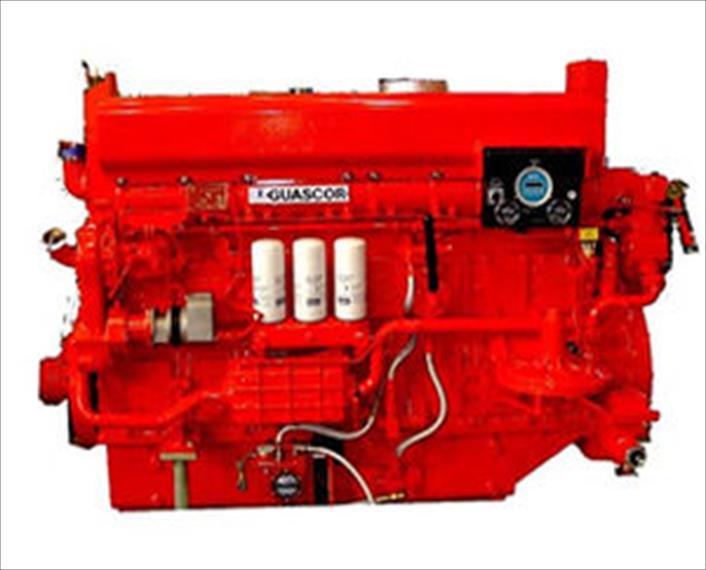 2010 Guascor SFGLD240 Generator Set